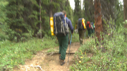 HD2009-8-6-4 hikers in forest Footage