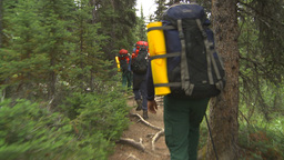 HD2009-8-6-4 hikers in forest Stock Video Footage