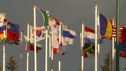 HD2009-1-5-24 many flags Footage