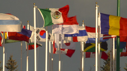 HD2009-1-5-24 many flags Stock Video Footage