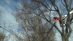 HD2009-1-9-18 arborist chainsaw bucket lift cut Stock Video Footage