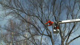 HD2009-1-9-22 arborist handsaw bucket lift cut Stock Video Footage