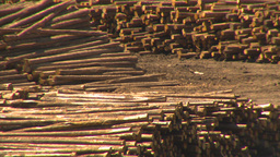 HD2009-7-2-18 log mill montage Stock Video Footage