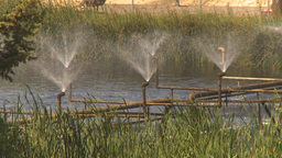HD2009-7-2-22 water aeration pumps Stock Video Footage