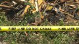 HD2009-7-8-4 Fireline Do Not Cross Z stock footage
