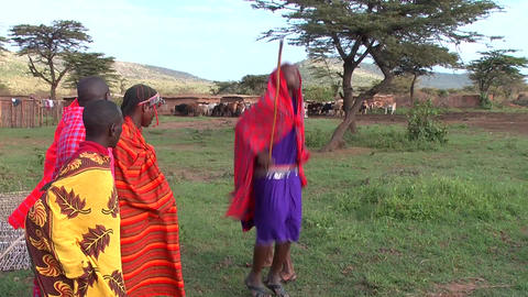Maasai tribe dancing Footage