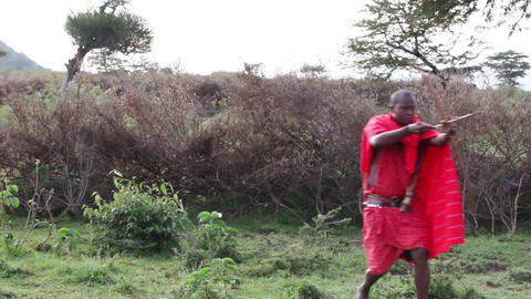 Maasai warrior hunt the beast Footage