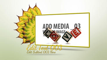 Organic Leaf Sequence After Effects Template