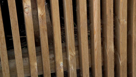Hay Inside The Wooden Cage Lumber Planed Saw Mater stock footage