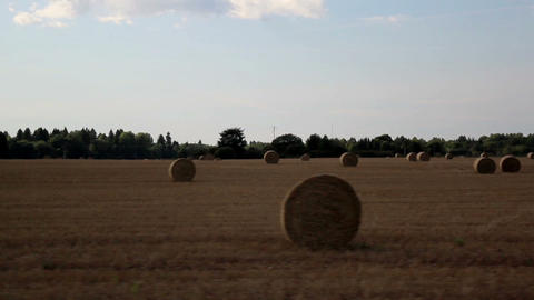 Field of hay Haystacks Footage