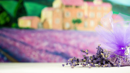 Lavender Decoration Present For Home Fragrance In  stock footage