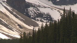 HD2009-6-9-13 forest and snow Stock Video Footage