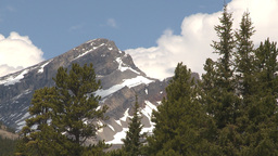 HD2009-6-9-27 Mountain and forest Stock Video Footage