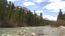 HD2009-6-9-31 Mountain stream Stock Video Footage