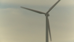 HD2009-6-20-27 cattle and wind turbines on ridge Z Stock Video Footage