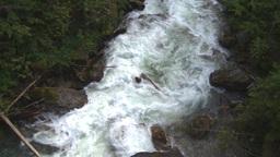 HD2009-6-22-36 wild river overhead Stock Video Footage