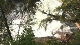 HD2009-6-22-44 wild river and forest Stock Video Footage