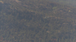 HD2009-6-26-9 float plane in flight Footage