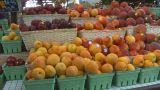 HD2009-6-31-41 Granville Island Market Peaches And Berries stock footage