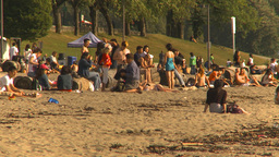 HD2009-6-32-50 people on beach Stock Video Footage