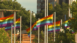 HD2009-6-33-6 rainbow flags Stock Video Footage