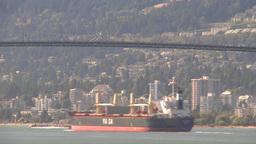 HD2009-6-34-15 cargo ship passes under bridge TL Stock Video Footage