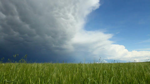Storm Cloud 01 stock footage