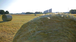 Rolled Hay Bales On Field Wide Crane Shot stock footage