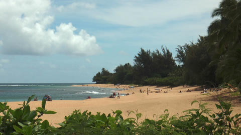 Beach Life At Beautiful Beach On Kauai Island, Haw stock footage