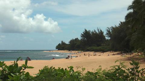 beach life at beautiful beach on Kauai Island, Haw Footage
