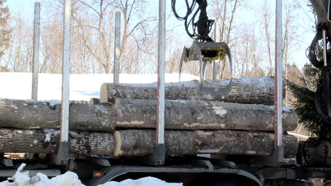 Unloading smaller logs by threes Footage