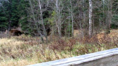 Walking on the wooden bridge Footage