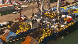 HD2009-11-3-4 fishing boats Stock Video Footage