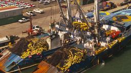 HD2009-11-3-4 fishing boats Stock Video Footage