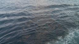 HD2009-11-5-3 ships wake ocean Footage