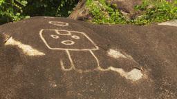 HD2009-11-5-31 petroglyph Stock Video Footage
