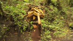 HD2009-11-8-19 guatemala woma and firewood on head Stock Video Footage