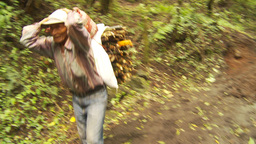 HD2009-11-8-21 guatemala man carries firewood on head Footage