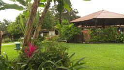 HD2009-11-11-18 Costa rican garden Stock Video Footage