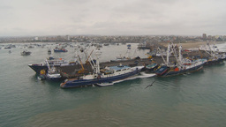 HD2009-11-12-4 tuna fleet at dock Footage