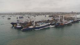 HD2009-11-12-4 tuna fleet at dock Stock Video Footage