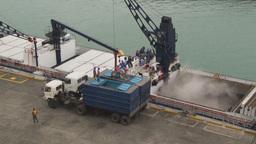 HD2009-11-12-6 unloading tuna Stock Video Footage