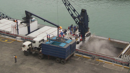 HD2009-11-12-6 unloading tuna Footage