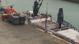 HD2009-11-12-12 refrig unloading tuna Stock Video Footage
