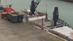 HD2009-11-12-12 refrig unloading tuna Footage