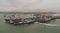 HD2009-11-12-16 tuna fleet at dock Stock Video Footage