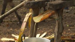 HD2009-11-12-32 sugar cane press Footage