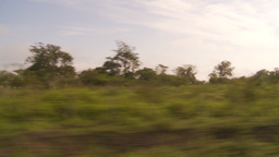 HD2009-11-13-16 drive along Ecuadoran bush country Stock Video Footage