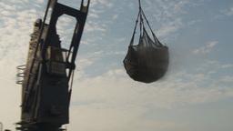 HD2009-11-13-32 unloading tuna Stock Video Footage