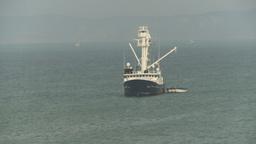HD2009-11-13-38 tuna at sea Stock Video Footage